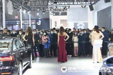 汽车行业前景有多好,一个长沙车展卖了100亿!